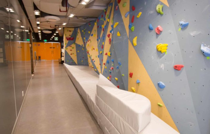 Google México estrena muro de escalada en sus oficinas   Muta Climbing