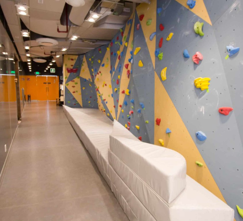 Google México estrena muro de escalada en sus oficinas | Muta Climbing
