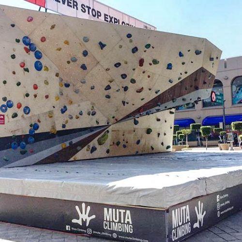 Renta-de-muros-de-escalada-muta-climbing