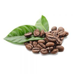 cafe de especialidad en mexico euforia 300x300   Café de Especialidad